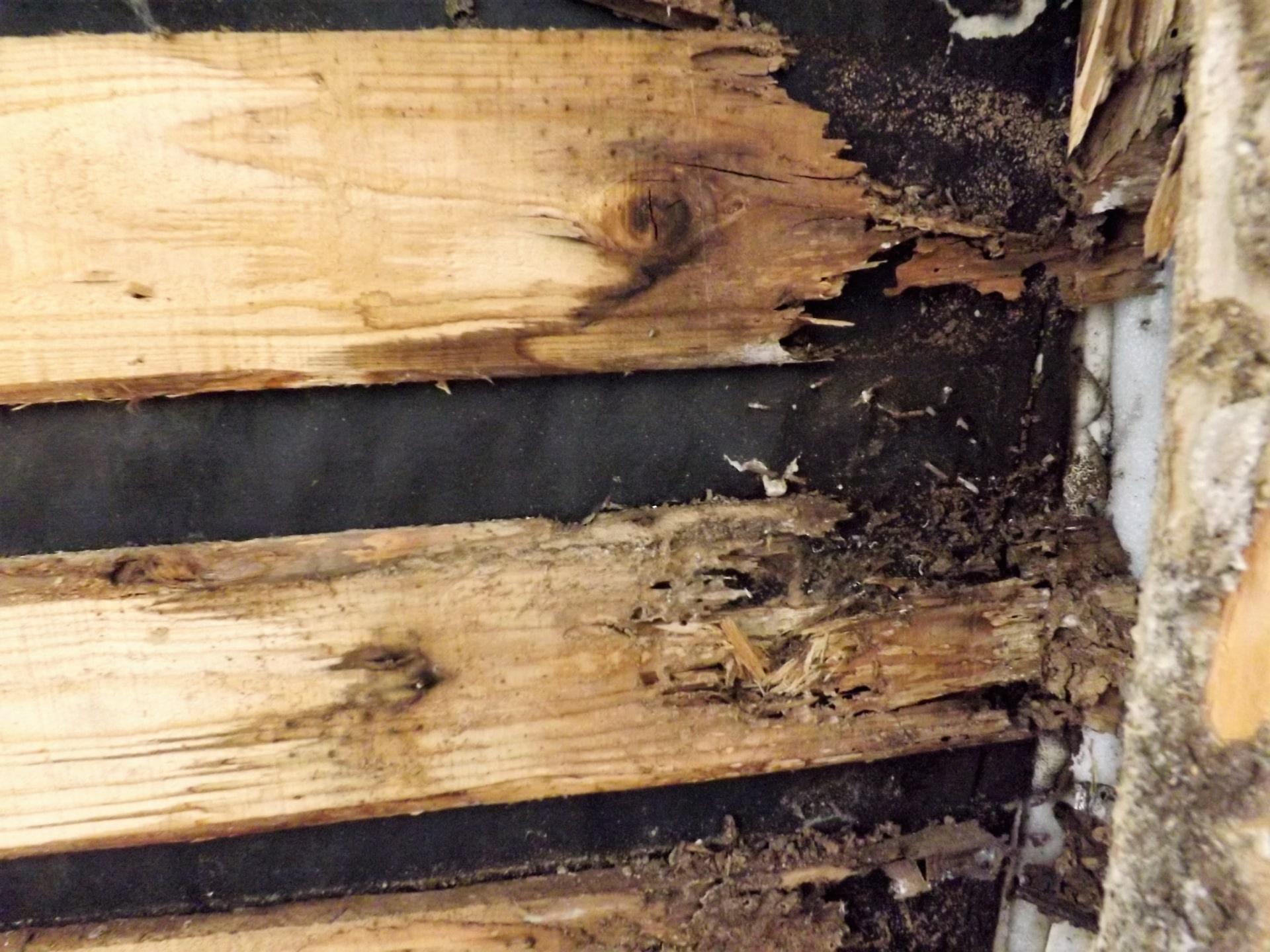 床下防蟻工事